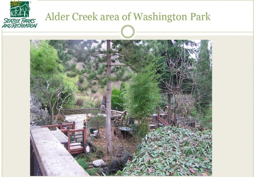 alder creek backyard